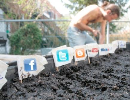 social-media-jardin